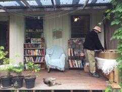 Backyard bookshop with lazing Minerva